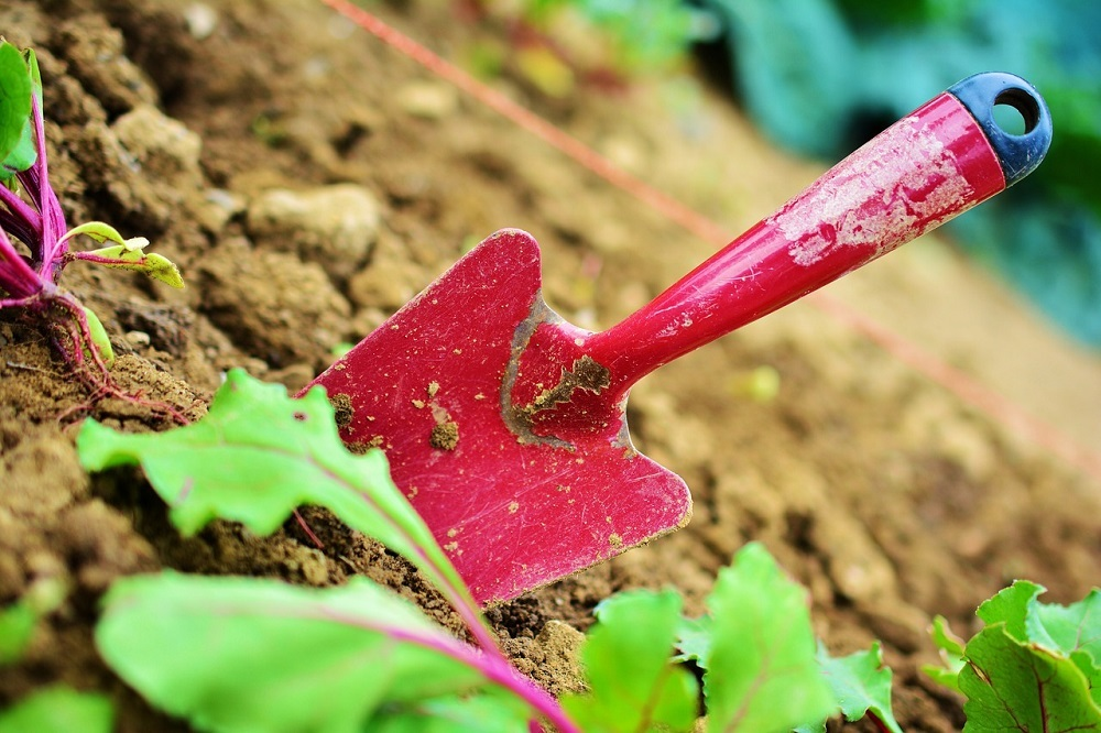 presupuestos gratis de jardineros precios